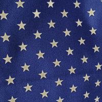 Estrellas Blancas Azul